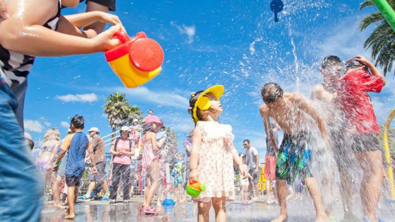 Top 5 Family Attractions in Auckland